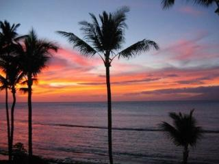 Summertime Special in West Maui!!! $99 nt Through June!!, Lahaina