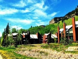 Gorgeous Mountain Condo - Fully Renovated - Views!, Durango