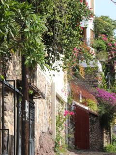Lovely Old Town, take a guided walk