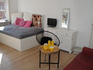 Nice bright Copenhagen apartment near Noerrebro station, Copenhague