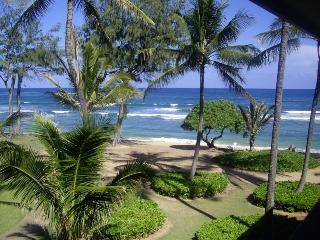 Beautiful Ocean Views and Swaying Palm Trees, Kapaa