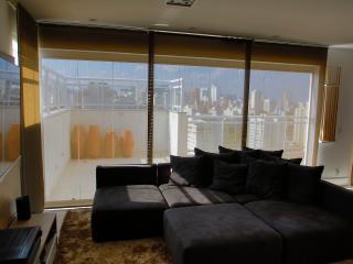 Luxury Duplex Penthouse near Ibirapuera Park