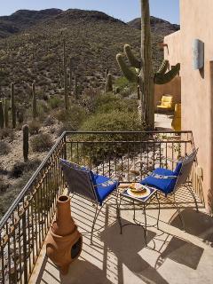 Cactus Flower Porch