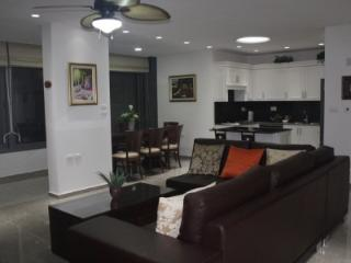 Gorgeous, Renovated Apartment with Beautiful View, Jerusalém