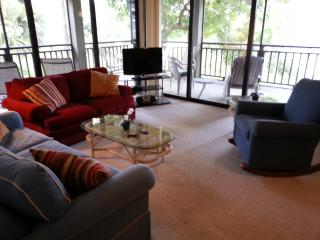 Large living area with floor-to-ceiling sliding doors to screened lanai