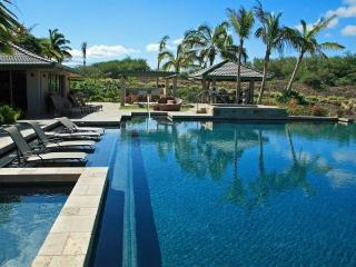 Infinity Pool at Amenity Center