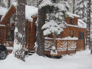 Cozy Knotty Pine Cabin, South Lake Tahoe