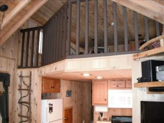 Cozy Knotty Pine Cabin