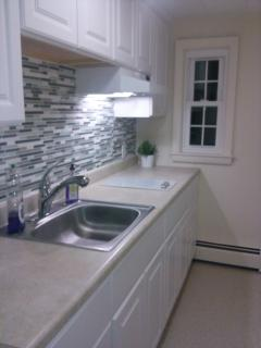 Pullman Kitchen with full fridge and Microwave