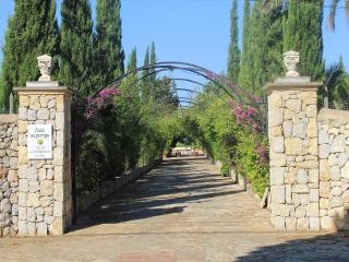 Finca Sa Garriga  - idyllic located finca in Majorca's wine growing area, Sencelles