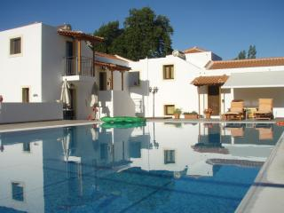 Skiathos Two Parisis Villas with pool.The 2 villas can accommodate 10 people.