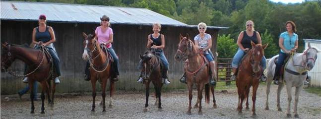 Plan a trip to one of the many horseback riding trails