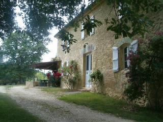 Horsefarm, 2 houses and a pool in Gascony, Bazian