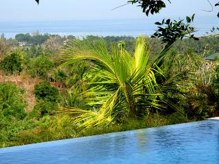 5-bdr spacious VILLA in BALI overlooking LOVINA BAY.