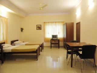 TULIPS HOMESTAY : NON-A/C DELUXE STUDIO ROOM, B1, Mysore