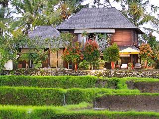 Villa Padi Menari - Rustic 3 bedroom house near Ubud