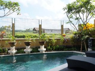Three Bed Room Pool Villa Rental Ubud with rice filed view