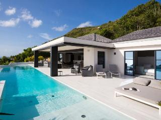 Rose Dog at Deve, St. Barth - Ocean View, Pool, Ultra Modern Decor, St. Jean