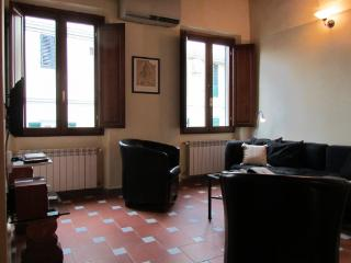 CR112cFlorence - Apartment Vincent, Firenze