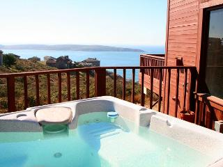 """Beach Nest"" Hot Tub,Endless Ocean Views,WiFi! Gas/log fireplace 3 for 2!, Dillon Beach"