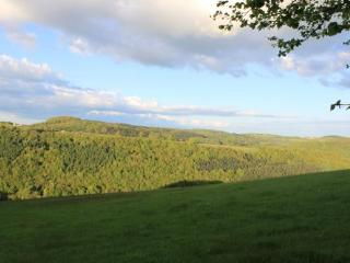 View From the property