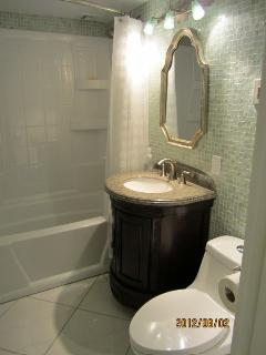 Bathroom completely renovated with glass tiles, long toilet bowl and new everything