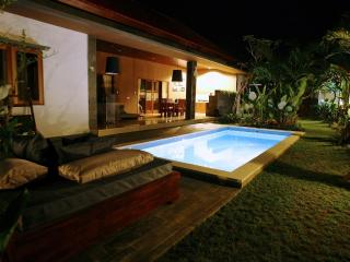 Luxury Villa Divinka, close to the beach, pool, garden, Canggu