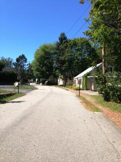 Neighborhood View from Property