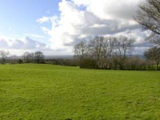 A View from Vale Farm