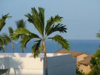 Nice Ocean View from Lanai