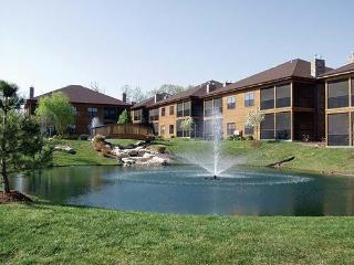 Beautiful Studio Condo in the Branson Woods