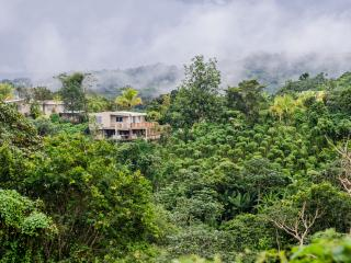 Casa Flor - Mountain Top Garden Home w/Wi-Fi, Utuado