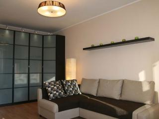 Cosy apartment close to the city center, Moscú