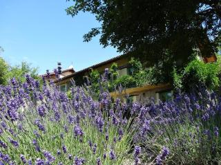 Comfortable new studio in an Italian Lavenderfarm, Spigno Monferrato