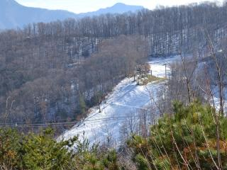 FANTASTIC VIEWS OF OBER GATLINGBURG SKIING*CLEAN*RELAXING*BREATHTAKING*TRANQUIL, Gatlinburg