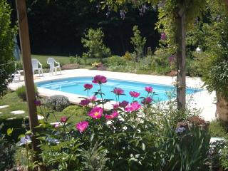 Pool in the peaceful garden