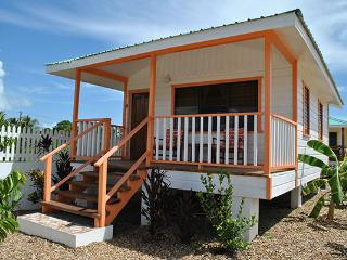 Latitude Adjustment - Orange Starfish Cabana