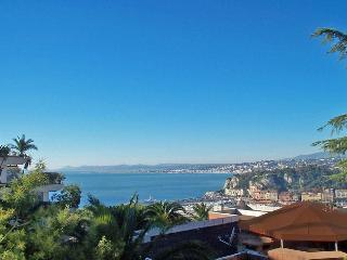 Nice - 1-bed aptment - parking, great view, garden, Niza
