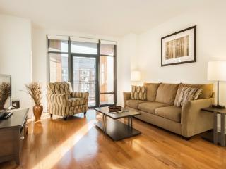 Washington DC- 2 Bedroom / 2 Bath Luxury Apartment