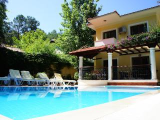Villa Dolphin, Private Villa with pool, quite loca, Gocek