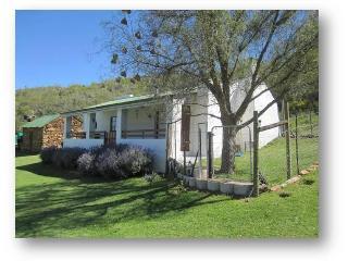 Bo Kouga: Springbok, Uniondale