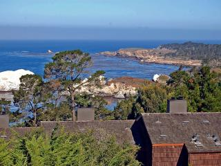 Hyatt Carmel Highlands Ocean Views 1 & 2 Bedrooms