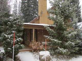 Blue Spruce Hideaway tucked in the trees of Spring Mountain, McCall