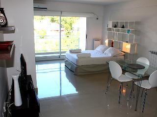 Studio - beautiful pool on the terrace - Guatemala and  Darregueyra st, Palermo Soho (D174PAS), Buenos Aires
