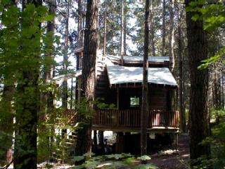 Romantic Wilderness TreeHouse (by Hood River, OR), White Salmon