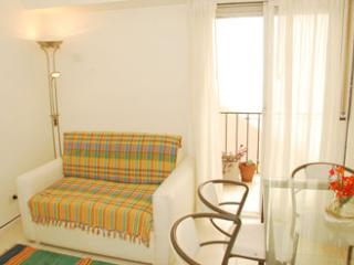 Excellent 1 BR apartment in Palermo Soho, Buenos Aires