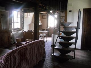 Le Felcete: Platani, San Venanzo