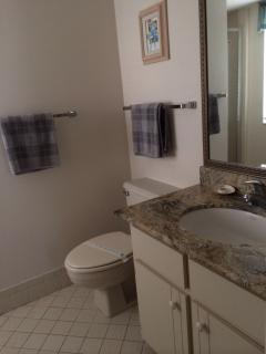Master In Suite bathroom with granite vanity and shower