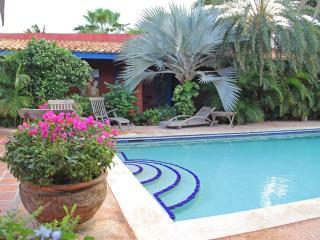 La Maison Aruba - Studio #3 Studio with pool 800 y, Palm - Eagle Beach