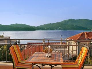 Penthouse in Villa with large terazze and sea view, Zaton